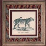 Animals B2161WD Wallpaper Border