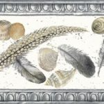 Feather Seashell KS74369 Wallpaper Border