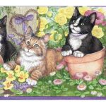 Purple Kittens And Flowers OS717 Wallpaper Border