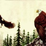 Eagle Wallapaper Border GB3122B Wallpaper