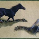 Cowboys Horses B4974HY Wallpaper Border